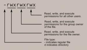 Linux File Permission